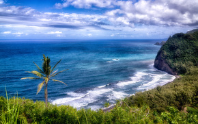 grande isola, Hawaii, paesaggio