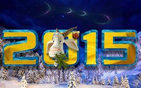 2015, KOZY, noc, śnieg