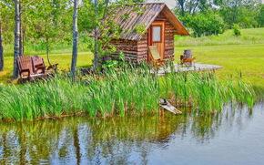 водоём, домик, деревья, пейзаж