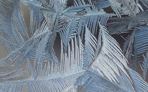 frost, glass, PATTERNS