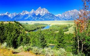 Yellostone, Montagne, fiume, alberi, paesaggio