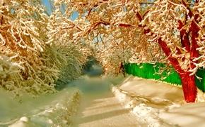 зима, дорога, деревья, забор, пейзаж
