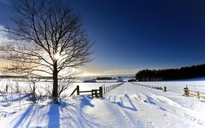 зима, дорога, поле, деревья, забор, пейзаж