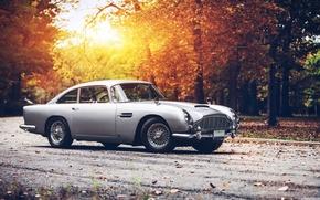 clássico, carro, nostalgia