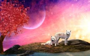 Wolves, 3d, art
