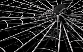 spider, web, 3d