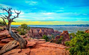Pomnik Canyon, Kolorado, zachód słońca, Góry, Rocks, drzew, krajobraz