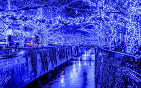 Tokyo, Blue Grotto, Giappone