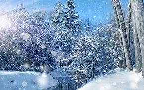 冬天, 河, 树, 雪, 景观