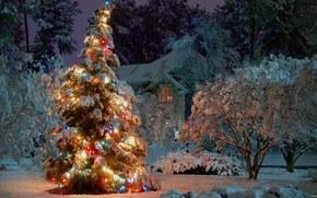 2015, praznik, Natale