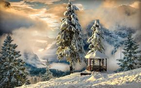 winter, Mountains, Darewo, arbor, landscape