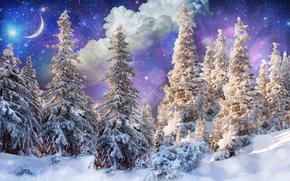 inverno, alberi, nevicata, paesaggio