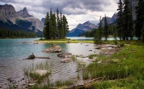 Lac Maligne, Parc national de Jasper, Canada, lac, Montagnes, arbres, paysage
