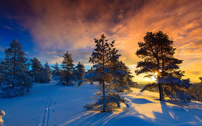 Norway, winter, snow, Naglestadheia, frost, and the sun, wonderful day