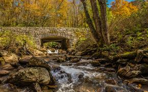 piccolo fiume, pietre, ponte, alberi, autunno, natura
