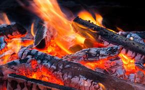 костёр, огонь, угли, пламя