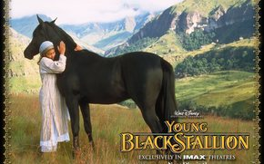 Born in the sands, The Young Black Stallion, film, movies