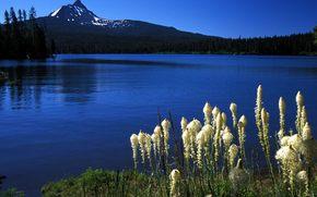 lago, montaña, naturaleza