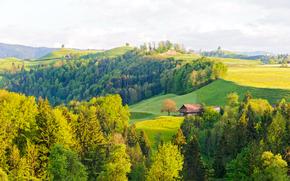 提契诺, 提契诺, 瑞士, 丘陵, 树, 家, 景观