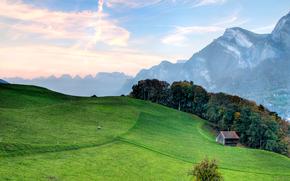 Montagne, Colline, prati, alberi, cabina, paesaggio