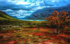 Lapponia, Svezia, Montagne, Colline, autunno, fiume, alberi, paesaggio