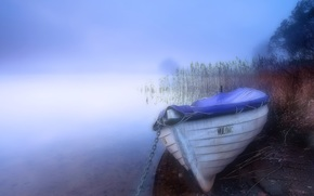 mgła, jezioro, łódź