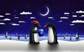 Penguins, regalo, medusa, Capodanno
