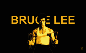 BRUCE LEE, bruce, lee, brus, li, zelko, radic, bfvrp, digital, darwings, paintings, design, artworks