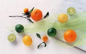 agrume, COLORE, giallo, arancione, Verde