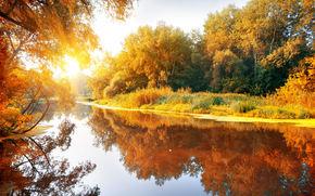 water, trees, sky, autumn, nature, sun, Widescreen