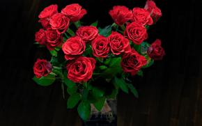 bouquet, Roses, Fiori, flora
