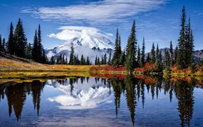 Tipsoo Lago, Parco Nazionale Mount Rainer, ozerl, Montagne, alberi, paesaggio