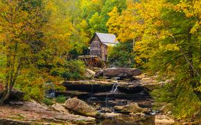 autunno, mulino, cascata, piccolo fiume, foresta, alberi, Glade Creek Grist Mill, Babcock State Park, natura, paesaggio