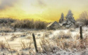 winter, trees, cabin, field, landscape