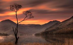 Buttermere Lake, Lake District, England, Озёрный край, Англия, озеро, горы, дерево, закат