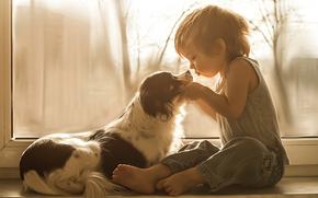 мальчик, собака, друзья, окно, на подоконнике