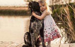 девочка, собака, пёс, друзья