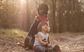 мальчик, собака, пёс, друзья
