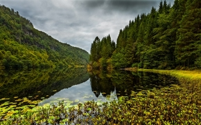 Kossdalen valley, Osteroy, norway, Osterёy, Norway, lake, forest