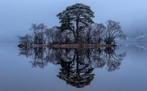 Loch Awe, Scotland, Лох-О, Лох-Эйв, Шотландия, озеро, островок, деревья, отражение