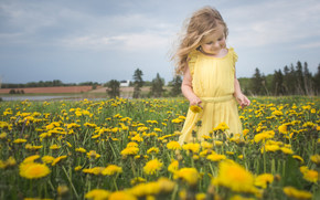girl, meadow, Blowball, Flowers, nature, mood