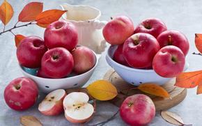 manzanas, RAMA, follaje, manzana, comida, lanzador
