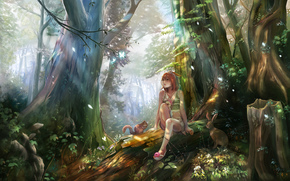 disegno, foresta, ragazza, animali, romanticismo, scoiattolo, lepre, Fiori, funghi