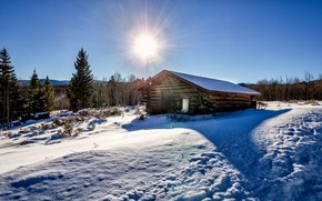 winter, snow, trees, cabin, sun, landscape
