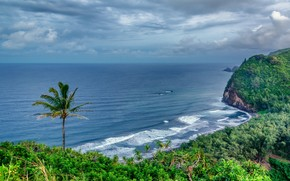 Nord Kohala, Grande Isola delle Hawaii, paesaggio