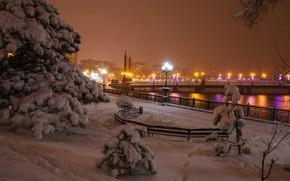 Novorossia, Donetsk, Donbass, città, inverno, nevicata, abete, ponte, luci