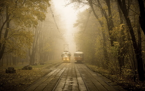 Tram, city, autumn, park, road, trees, transportation