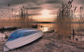 bay, sunset, Sweden, reed, boat