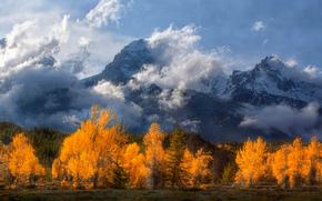 Rocky Mountains, Grand Teton, Wyoming, Grand Teton National Park, The Rockies, Mountains, clouds, trees, autumn