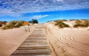 estrada, mar, praia, ensolarado, azul, céu, grama